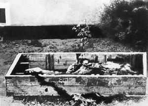 Hitler's Corpse