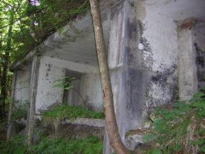 Mooslahnerkopf Ruins